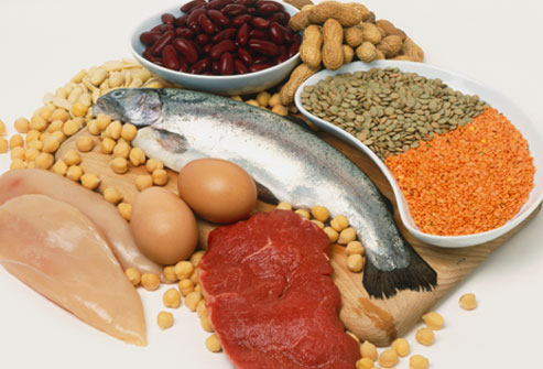 repair of cells and high protein diet